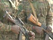 Troops Kill Several Boko Haram Terrorists In Borno