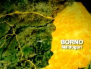 Suicide Bombers Kill One, Injure Four In Borno